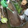 24day:冬の準備編:春菊・九条ネギ・大根の植え付け