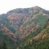 ぐんまワンデー世界遺産パスで紅葉狩りへ行こう!