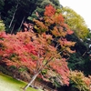 紅葉散策  奈良 正暦寺