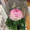 花を飾る 果物を飾る
