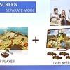 UE4.17で追加された、VRのSpectator Screen機能について