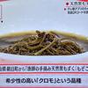 朝日町のクロモ(天然黒もずく)、関東のテレビで登場!