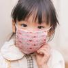 小学生の娘が2月にインフルエンザA型に罹って学校を休んだ話
