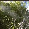 ハートを満たすヨーガ&ヒプノ瞑想。
