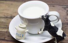 栄養満点牛乳は実はダイエット食?効果効能、お家で簡単牛乳寒天レシピもご紹介