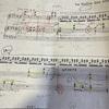 ラヴェル鐘の谷を再練習。録音記録有り。