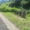 珍しい 庚申塔…鳥取幸神 福岡県鞍手郡