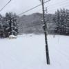 神立高原スキー場1/1[スキー2015-16]