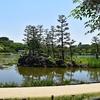 長居植物園 その2