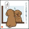 犬の4コマ漫画 1