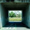 トンネルをみて人生を思い浮かべる。人生楽ありゃ苦もあるさ