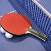 日本男子卓球界に新たな風を吹き込んだ水谷隼選手!おめでとう、めっちゃかっこいいよ