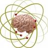 脳科学や心理学をどれだけ学んでも、やはり好転できない人間関係がある
