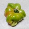 農家で規格外の廃棄トマト貰って食べたら色々考えさせられた。