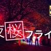 4k 権現堂公園『夜桜フライト』 ドローン 空撮 DJI Japan cherry blossoms