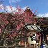 京都へ 3日目