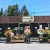 【閉店しました】読谷村に新ラーメン店がオープン!「琉球麺屋 一歩」へ行ってきた