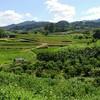 キトラ古墳から橿原神宮まで真夏に徒歩で巡った明日香村観光