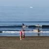 潮引けば、サーフィン楽しめそうです。波情報 湘南鵠沼09/02