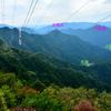武蔵からアンシハウラ山(アンシュウネ・アンショウ・アンシハウラ)へ