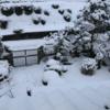 2014年の大雪の悪夢が蘇る〜今回積雪約10cm、来週末にも雪の予報が!?