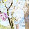 JR岐阜駅からてくてく歩いて、食べ歩き途中に参拝も