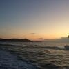 志摩沖でジギング釣査!トゲウミサボテンを釣ったんだ!