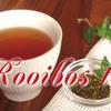 夏こそ麦茶代わりに ルイボスティーでミネラル+アンチエイジング