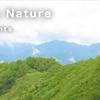 英語版いきものブログ「Wonderful Japanese Nature」運営開始!