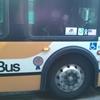 【節約旅deハワイ】極寒のザ・バスに乗ってドールプランテーションへ♪(前編・行き方)