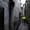 【写真部】東京私立中高写真展で「会長賞」を受賞
