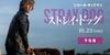 【洋画】「ストレイ・ドッグ〔2020〕」を観ての感想・レビュー