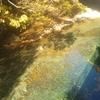 HSPにおすすめの保養地①-② ノスタルジックで無料の温泉もある四万温泉