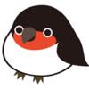 こやんぴの鳥命救助 その2 気を失ったツバメ物語