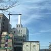 今日は通常通り。福井の経済を憂いつつピエール・バルーを思い出して聴いてます