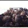 1945年4月1日『米軍、沖縄島に上陸』