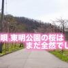 美唄 東明公園の桜はまだ全然でした(2017/5/3)