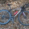 落ち葉 時々 自転車