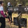 箱根・丸岳〜金時山2019/4/7