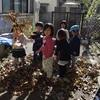 秋の遊び(11月始め頃)