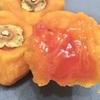 【柿って果物でしたよね ⁉︎】異次元レベルの干し柿「あんぽ柿」を食べてみた件