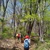 高尾山系・景信山で登山道整備のボランティア