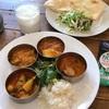 南インド料理レストラン、ヴェヌスサウスインディアンダイニング再訪☆