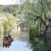 倉敷市の美観地区は元気だったよ。
