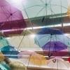 梅雨を楽しくするカラフルな傘✨