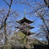 🌸上野公園 旧東叡山寛永寺五重塔と桜を撮影🌸