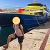 【プラヤデルカルメン近郊のおすすめ観光スポット情報③】コスメル島に行ってまいりました
