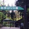 【加茂市】加茂山リス園はリスが脱走してておもしろかったです!