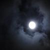 十三夜(栗名月)