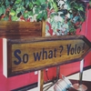 So what? Yolo! 感想